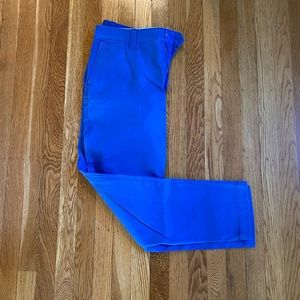 Ralph Lauren blue pants size 8